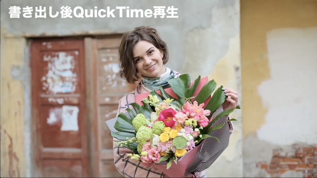 QuickTimeの再生画面