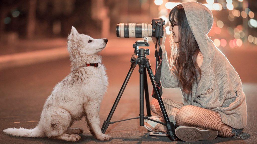 焦点距離別レンズのの特徴