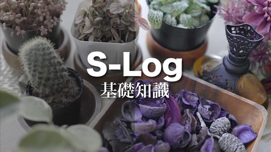 SONY:S-Logの基礎知識