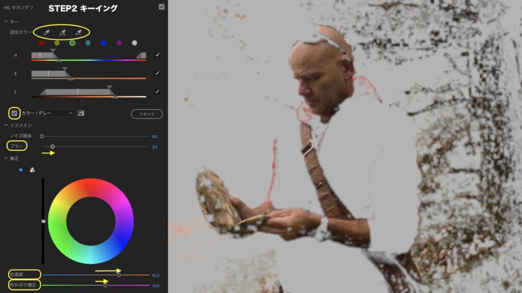 Premiere Pro:肌色の補正方法