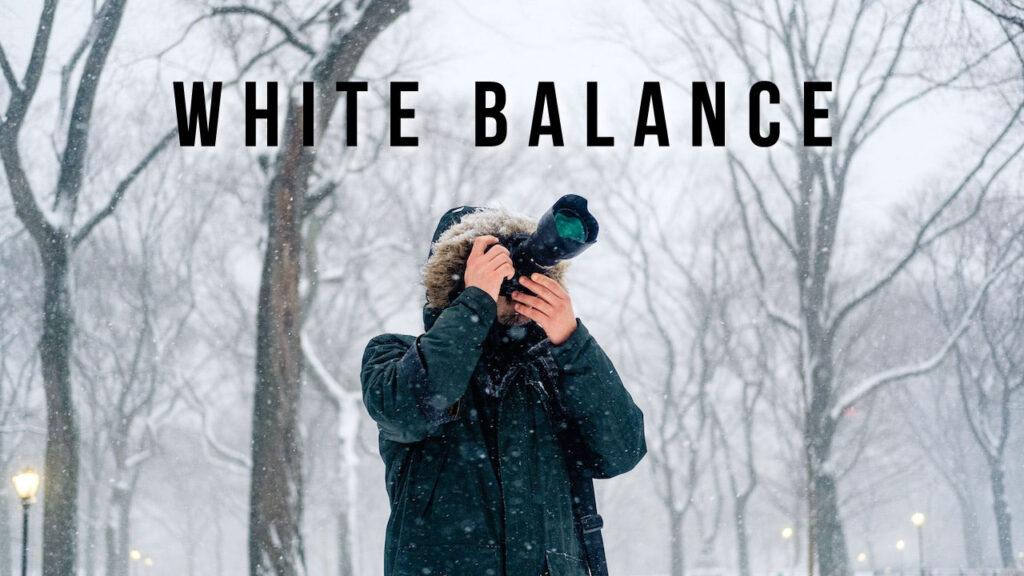 動画撮影時のホワイトバランス設定&選び方